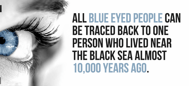 Interesting Facts About The Eyes 5