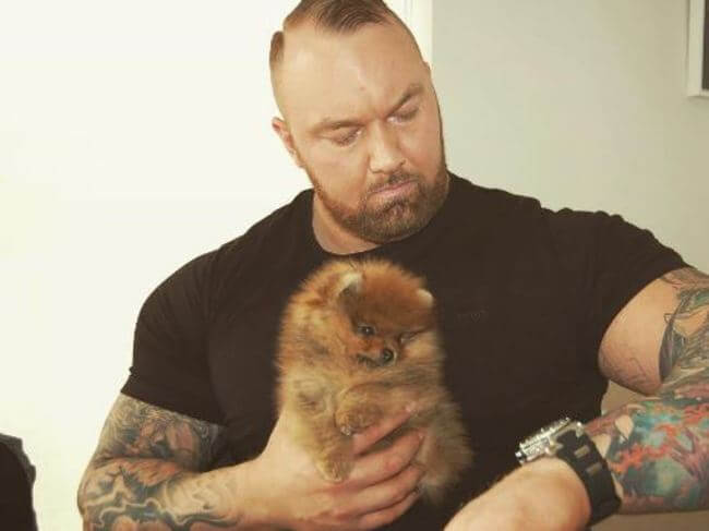 The Mountain From Game Of Thrones Has Adopted Tiny Puppy 1