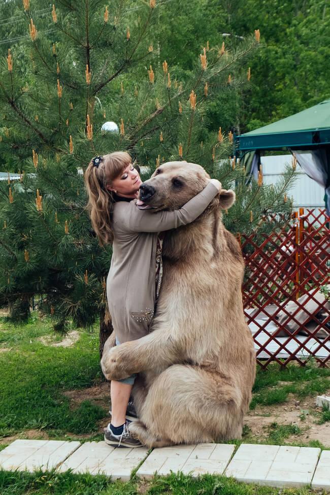 bear as a pet 2