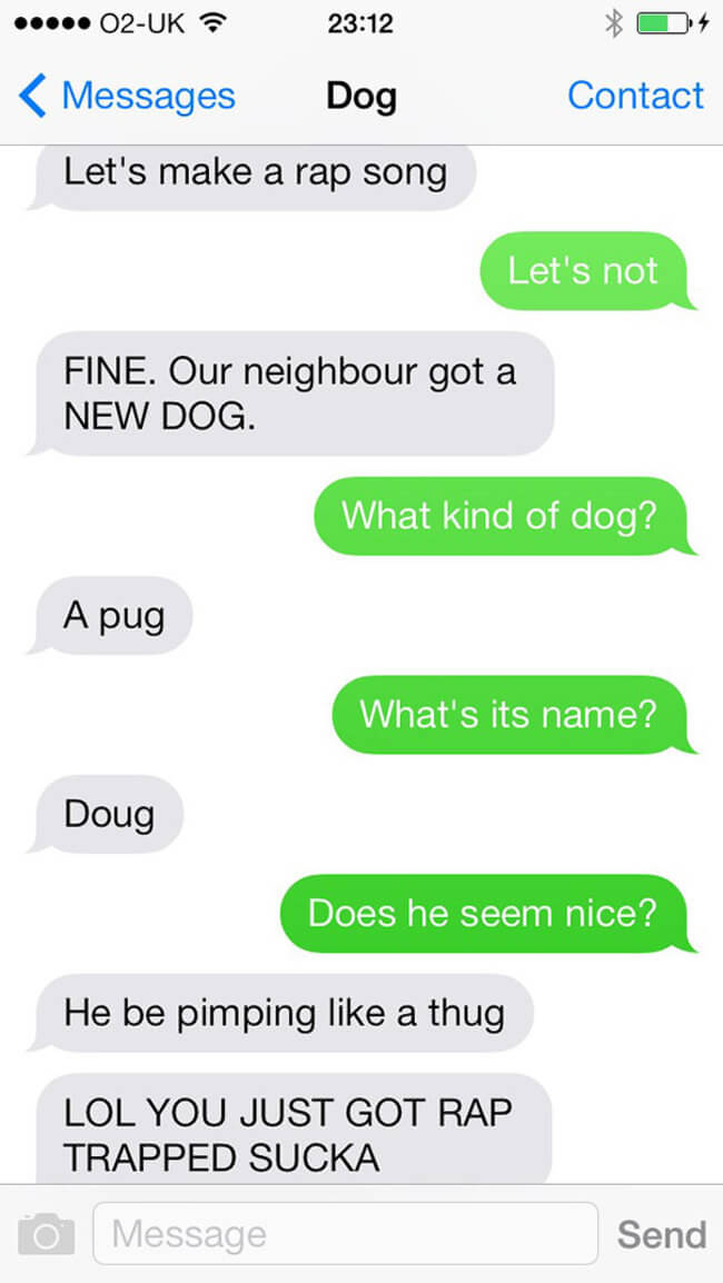 texts from funny dogs 13
