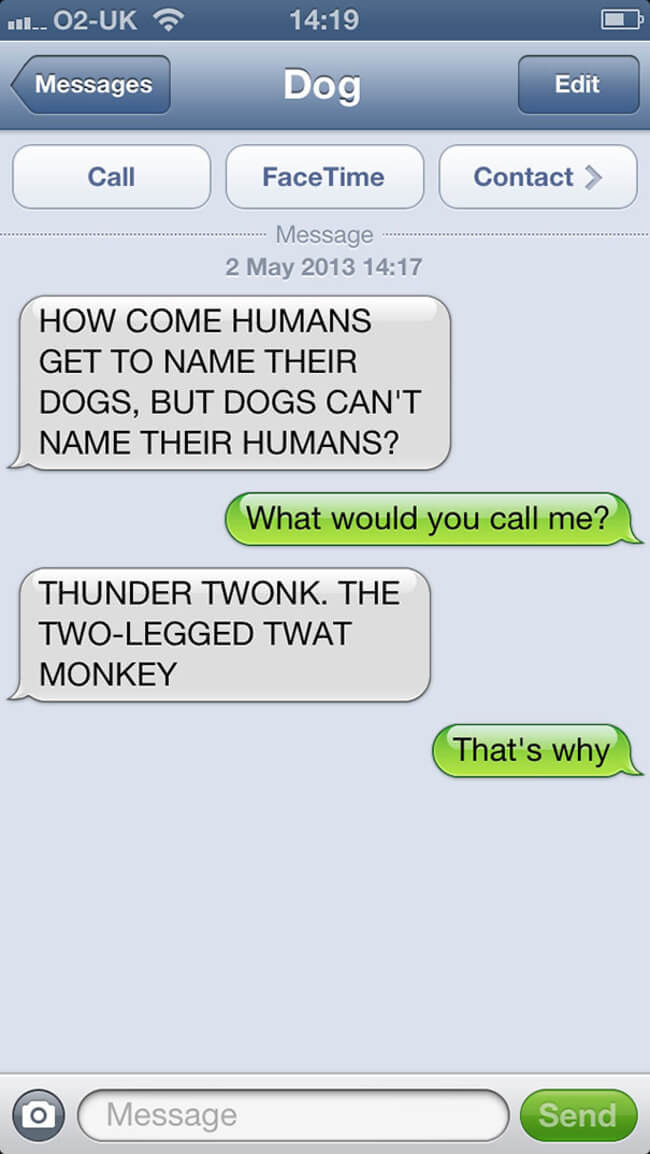 texts your dog would send 19