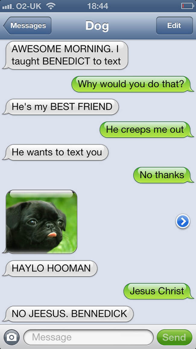 texts from funny dogs 12