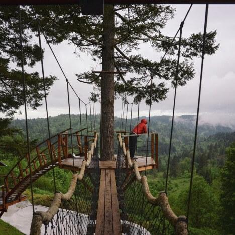 awesome tree house 5 (1)