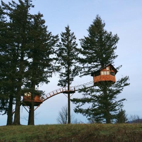 awesome tree house 8 (1)
