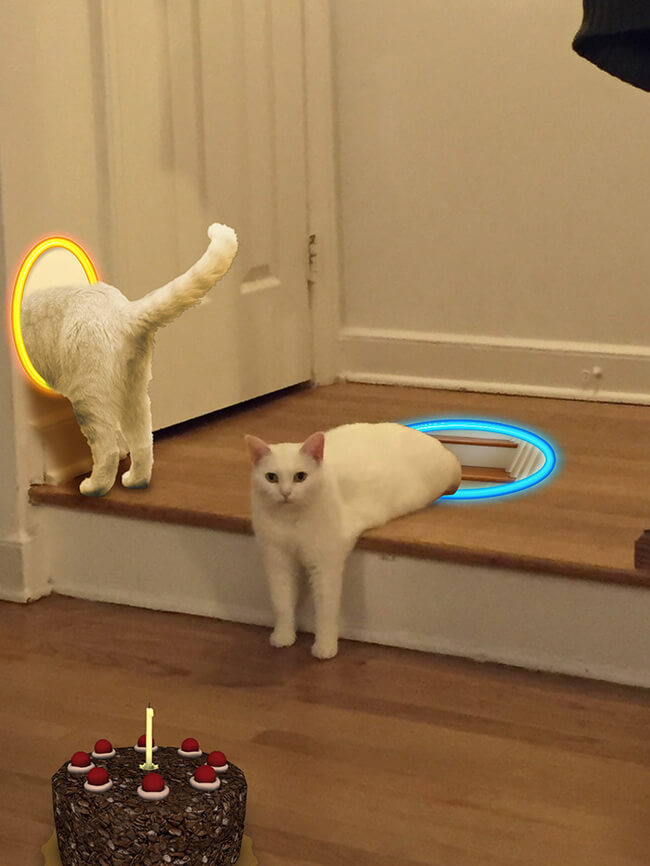 Half Cat photoshop battle 4