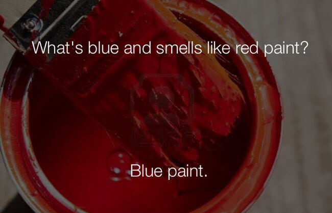 stupid haha jokes - whats blue and smells like red paint28