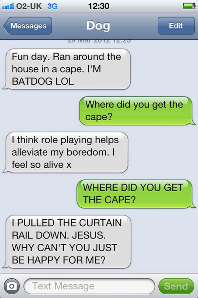 texts from your dog 24