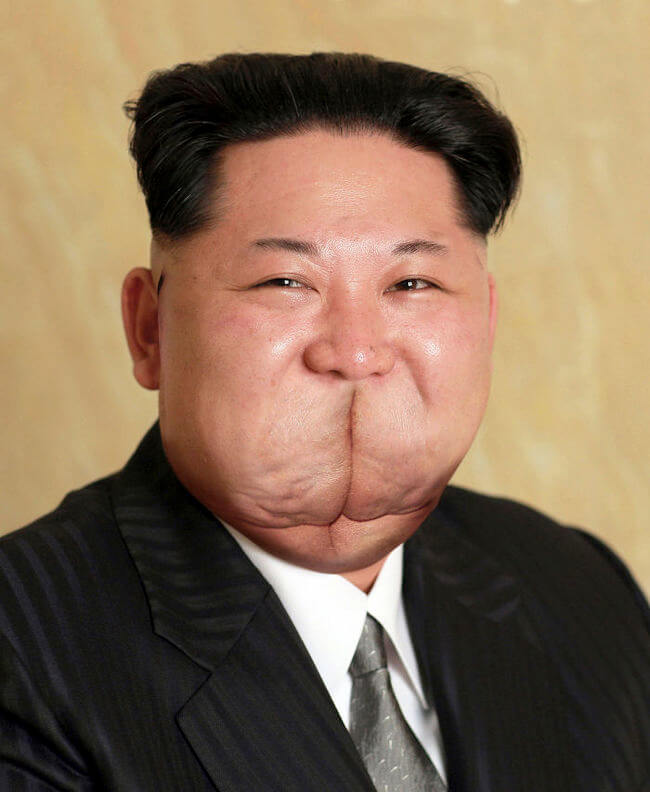 Newly Released Portrait Of Kim Jong-un 15