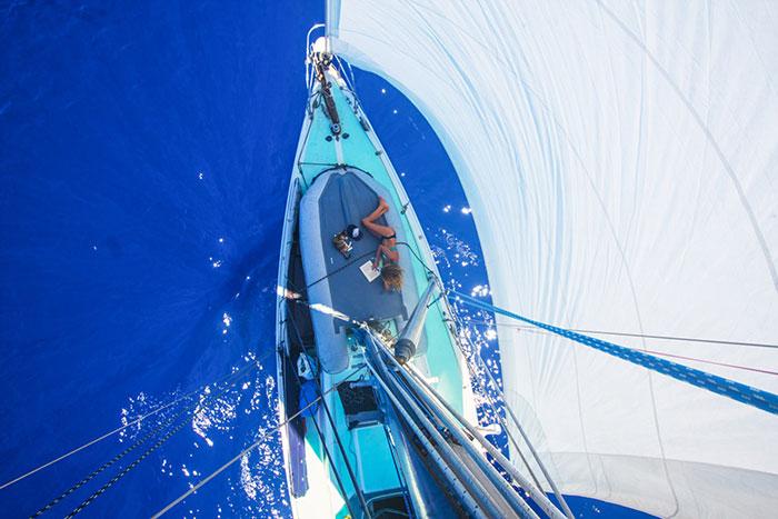sailing-cat-travelling-world 3
