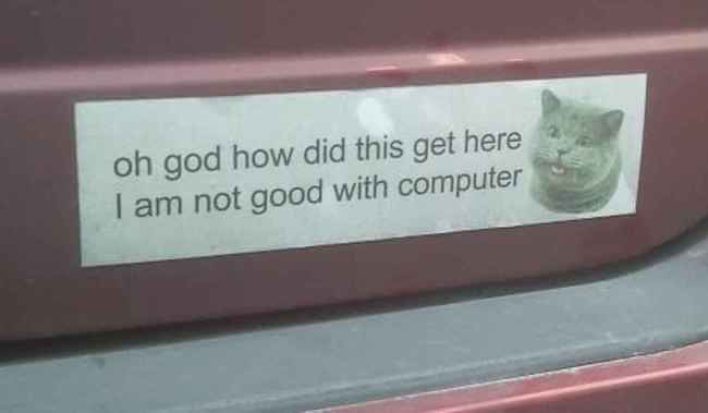 hilarious bumper stickers 4