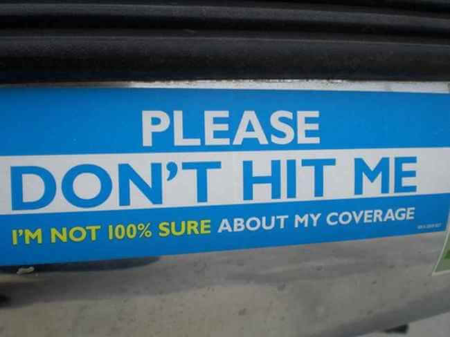 hilarious bumper stickers 5