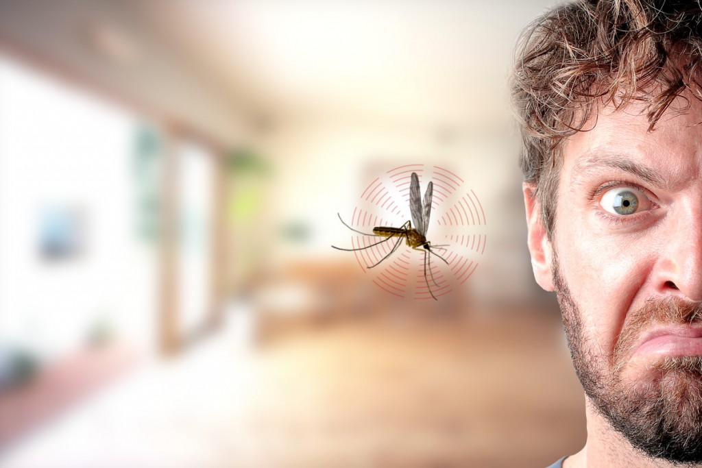 Mosquito-in-ear