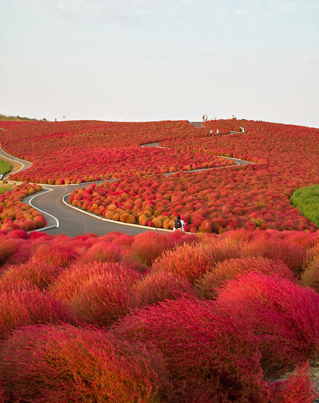 beautiful places in japan 4