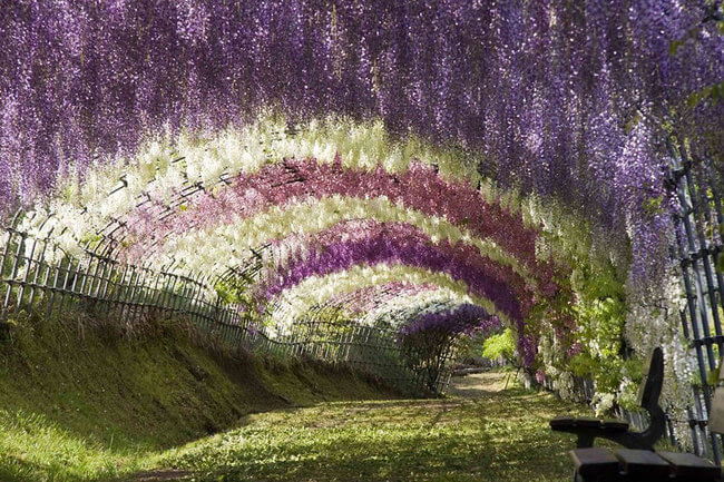 beautiful places in japan 7