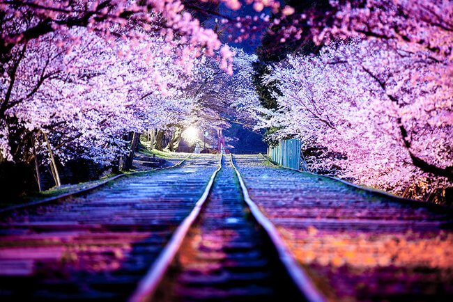 dreamy Places In Japan 17