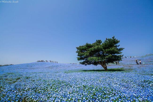 beautiful places in japan 5