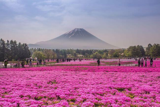 dreamy Places In Japan 3