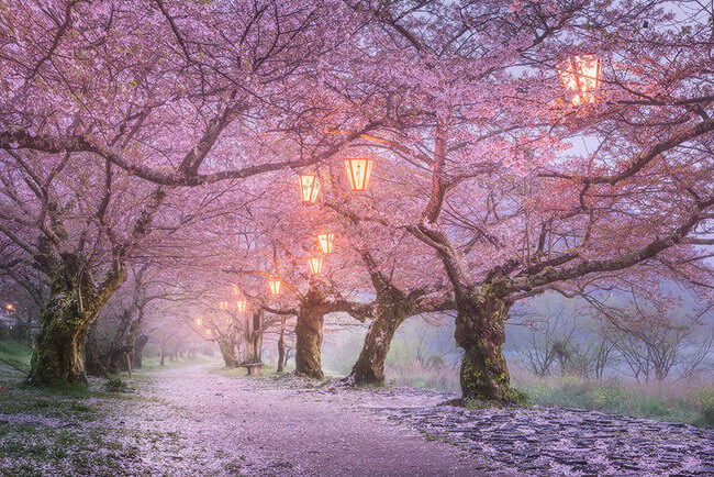 beautiful places in japan 14