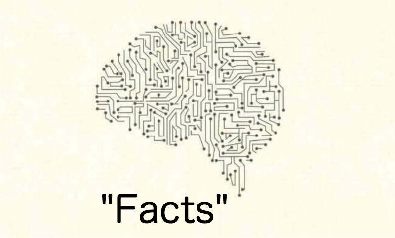 brain things feat