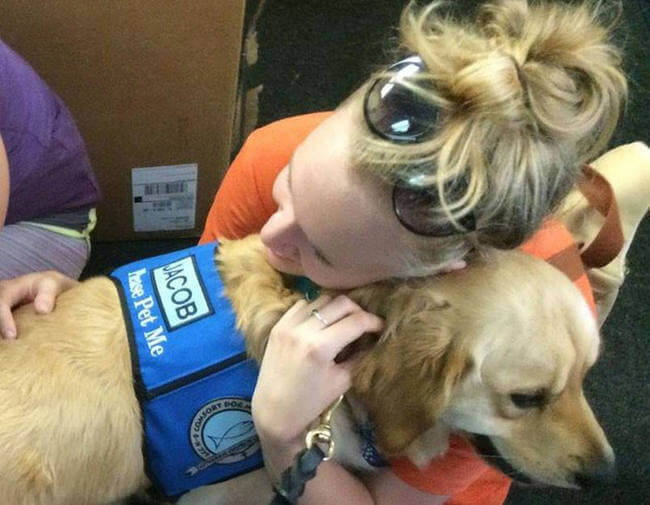 Dogs comfort Orlando shooting victims 5