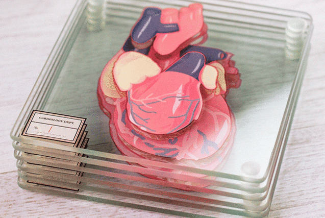heart anatomical coasters (1)