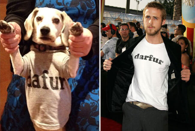 Famous Movie Scenes With His Dog 7