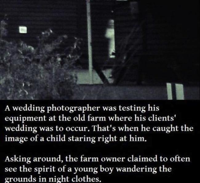 scary pics 24