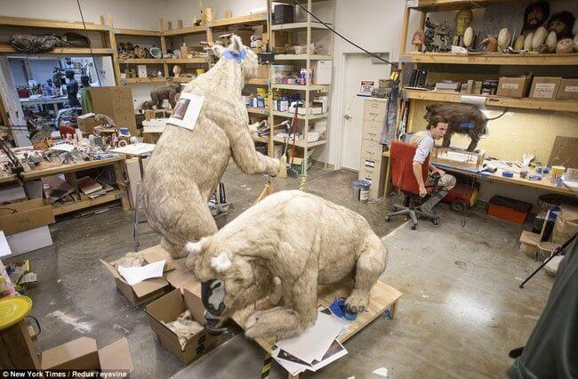 Huge life-size Noah's Ark 6