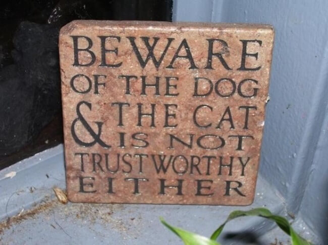 beware of the dog signs - cat is not trustworthy 12