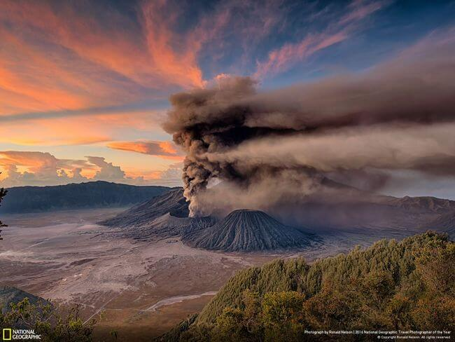 National Geographic Photographer of the year 2016 16