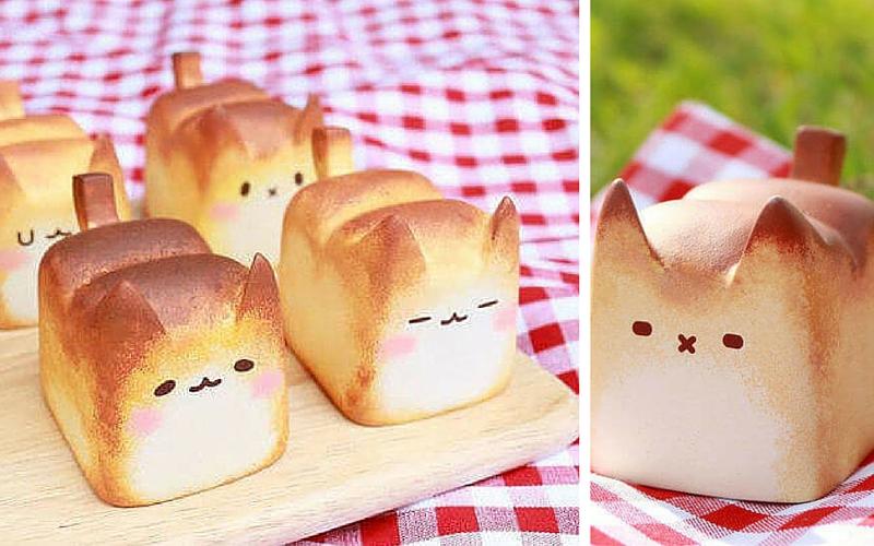 bread cat feat