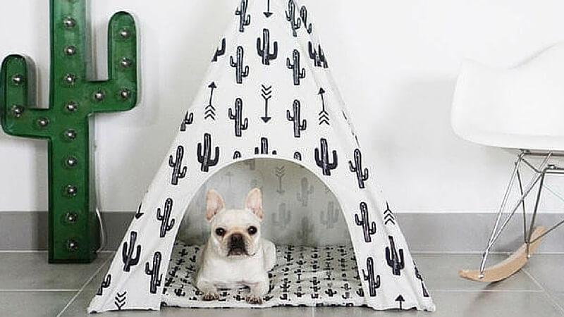 dog teepee (1) (1)