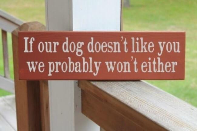 beware of dog - dog doesnt like you