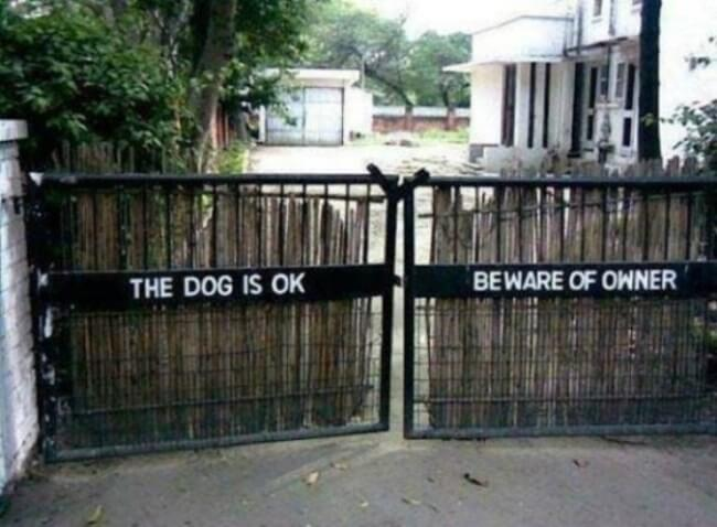 beware of dog - owner is mad