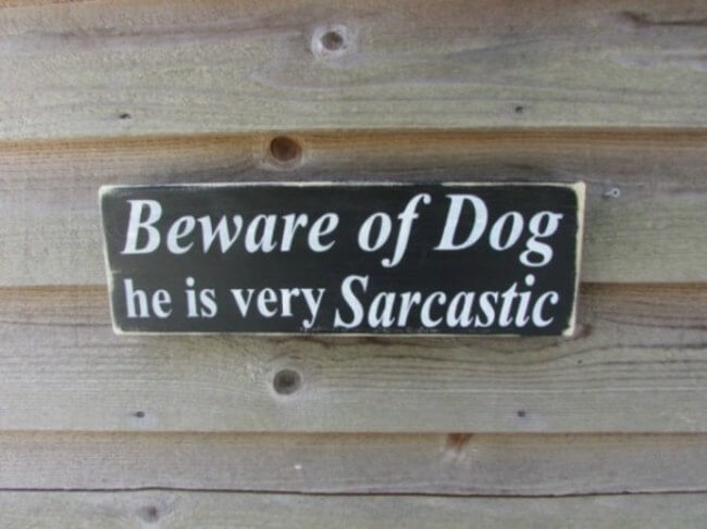 dog signs - sarcastic dog