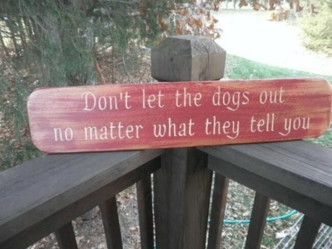 dog signs - dont let the dogs out 7