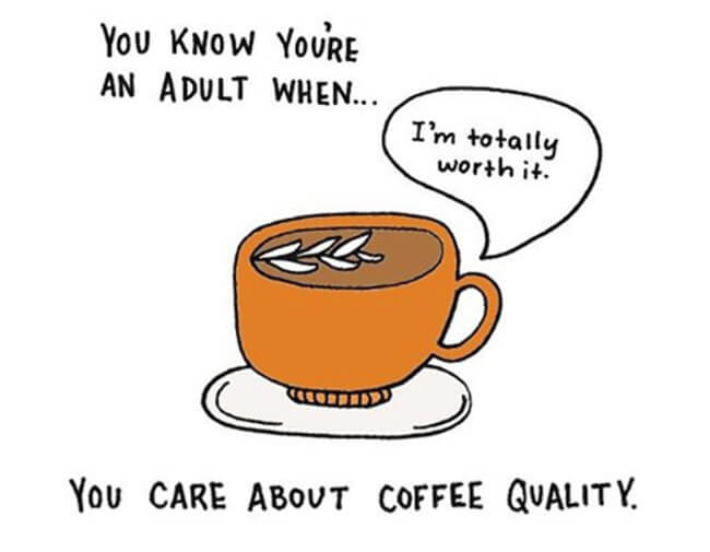 Funny Illustrations show you're An Adult 5