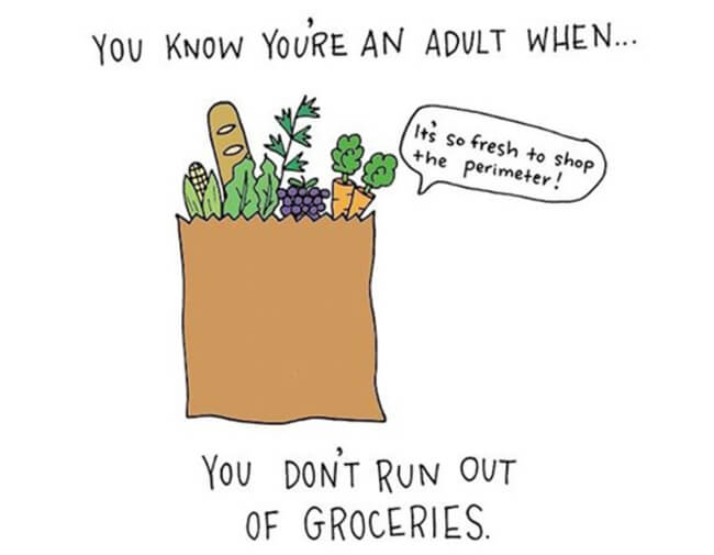 Funny Illustrations show you're An Adult 4