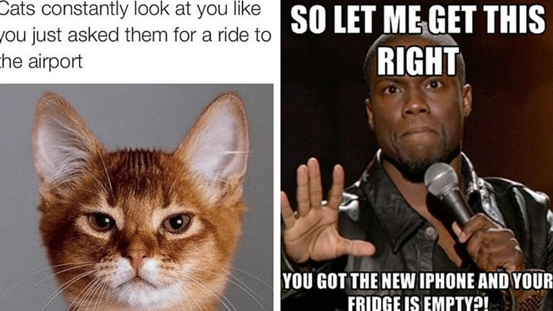 37 Funny Instagram Posts That Will Make You Love The