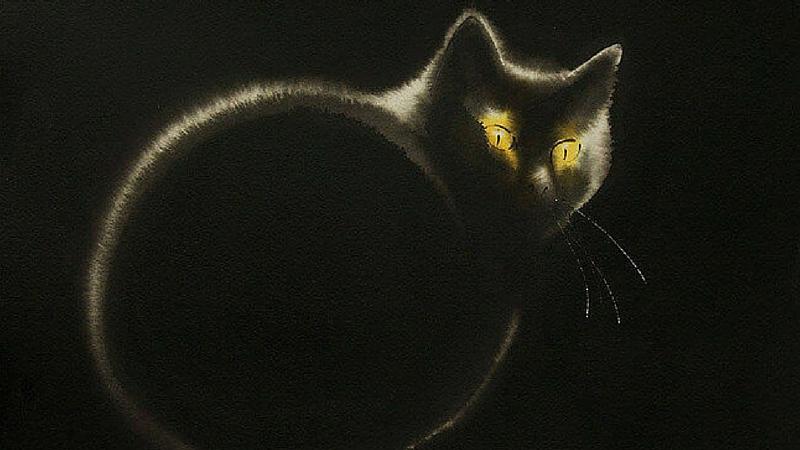 ink spills cat