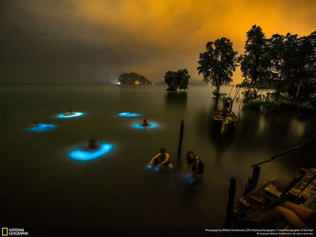 National Geographic Photographer of the year 2016 11