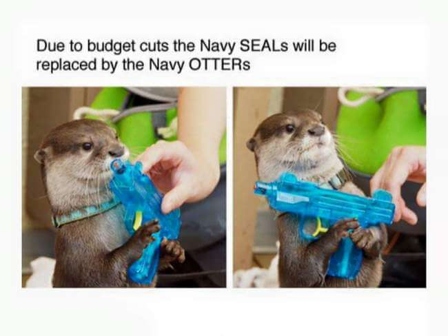 otters 7