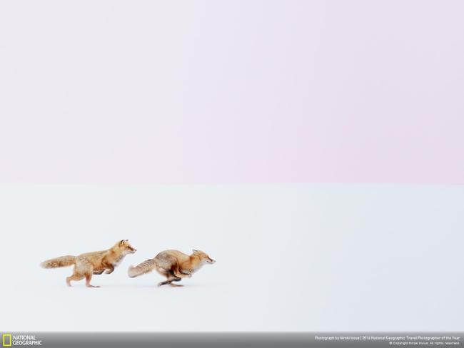 The National Geographic Traveler Photo Contest 1