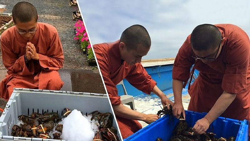 monks free lobsters (1)