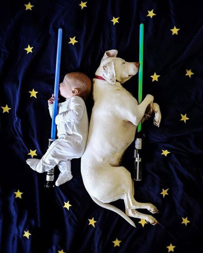 Mom Captures Special Moments Between Rescue Dog And Newborn 17