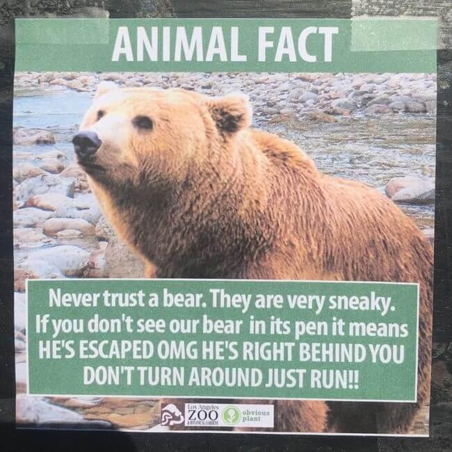 fake animal signs 6