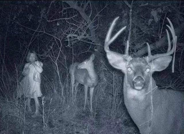 scary pics - girl in woods