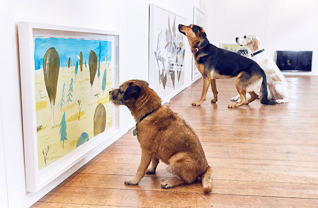 interactive art for dogs 5
