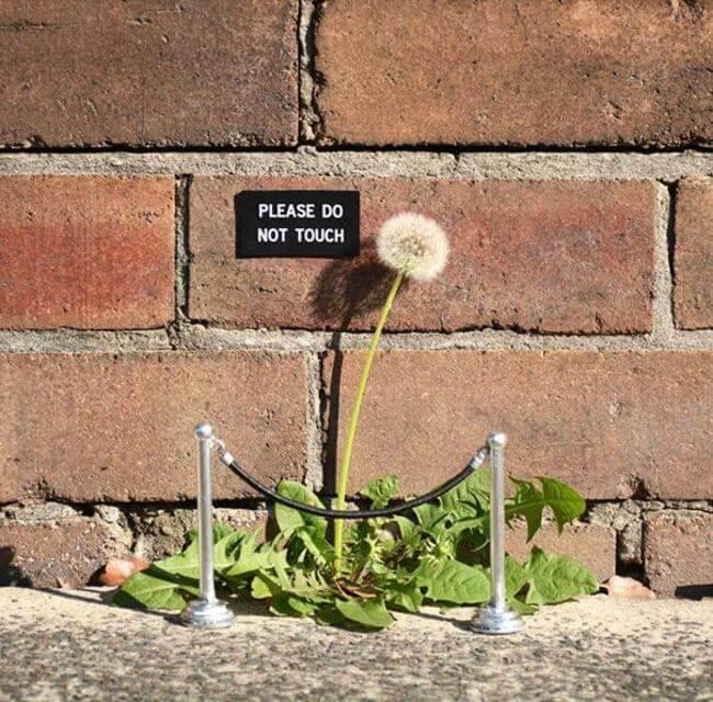 creative Vandals street art 17