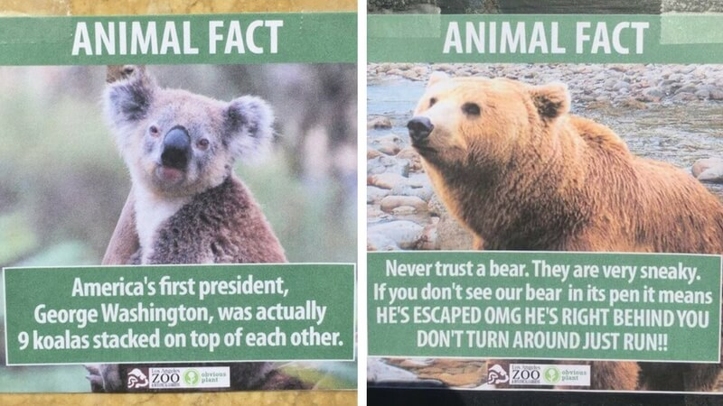 fake animal facts feat (1)